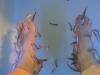 kangalfische